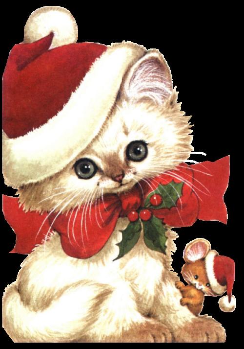 Kitten clipart christmas stocking clipart. Tubes noel animaux kar