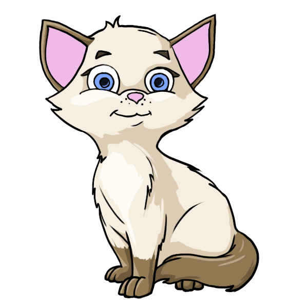Fluffy cat at getdrawings. Kitty clipart realistic