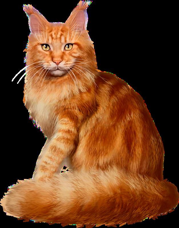 Kitten clipart farm cat.  babs d explore