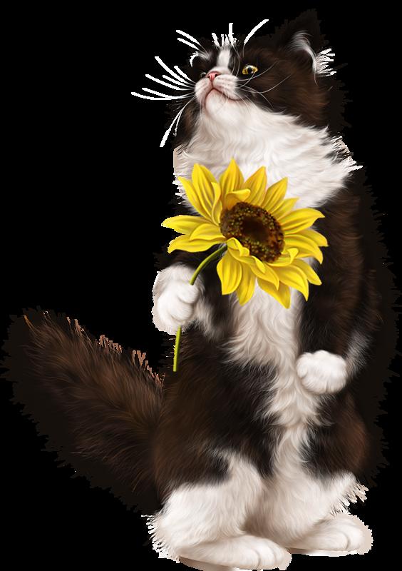 Tubes d artist laguna. Kitten clipart female cat