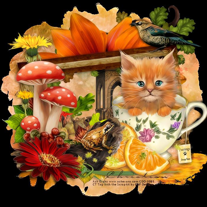 Bild by miniaska on. Kittens clipart five