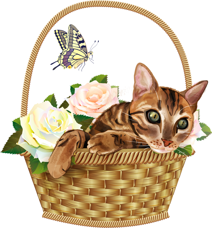 Kittens clipart flower.  pinterest album