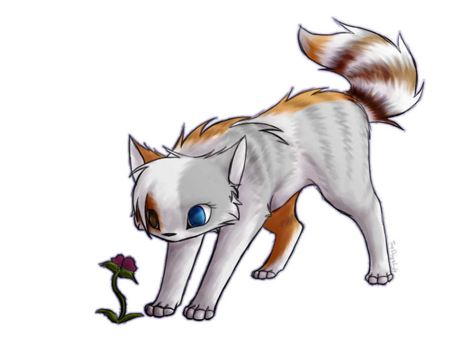 Kittens clipart flower. Image png animal jam