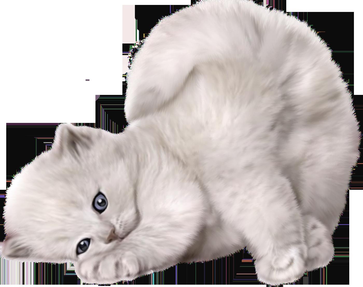 kittens clipart pretty cat