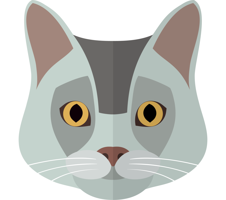Kitten clipart gray cat, Kitten gray cat Transparent FREE ... (1500 x 1329 Pixel)