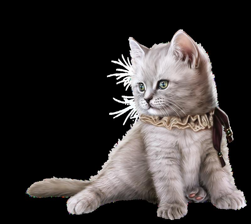 Kitten clipart group cat.  d liveinternet