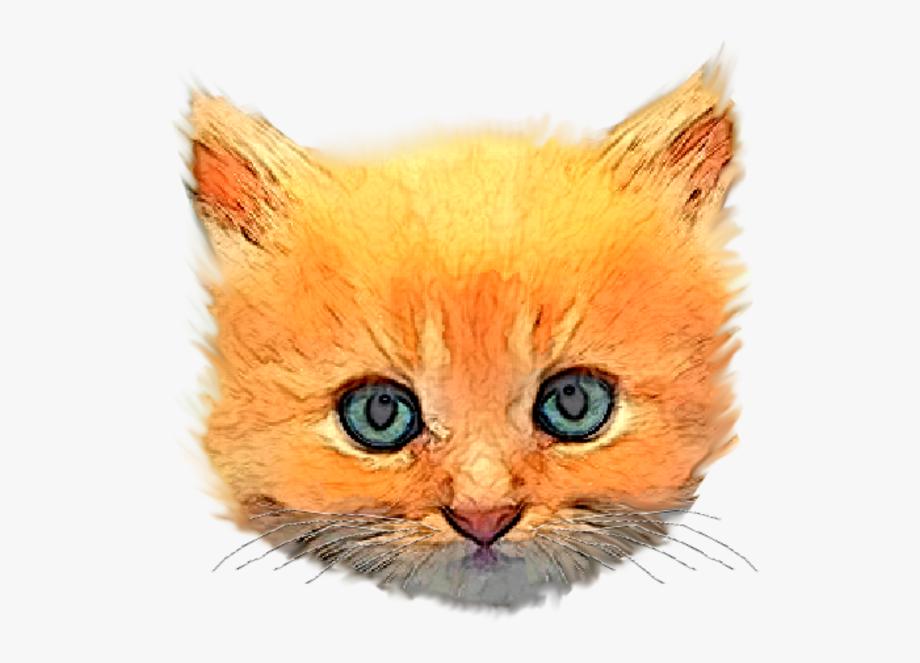 Image png transparent cartoon. Kitten clipart kitten head