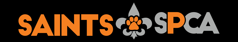 Kittens female cat