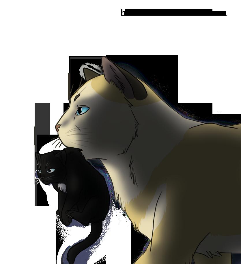 Kittens clipart one cat. Erwin and kitten levi