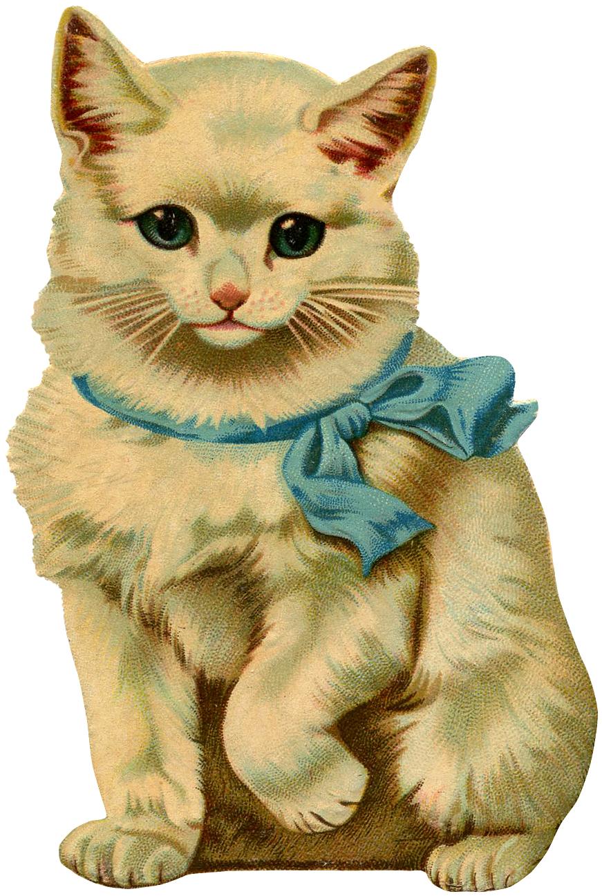 beautiful vintage kitten. Kittens clipart one cat
