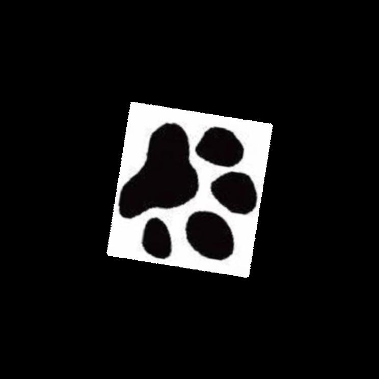 Pawprint clipart yorkie. Free cat paw prints