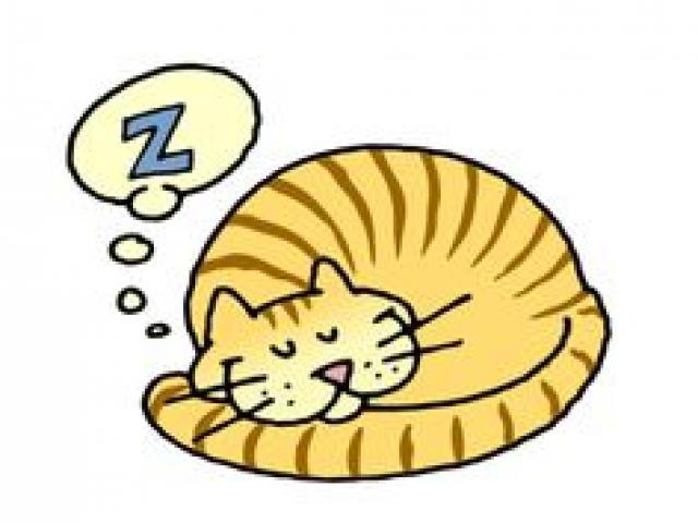 Kitten clipart purr. X free clip art