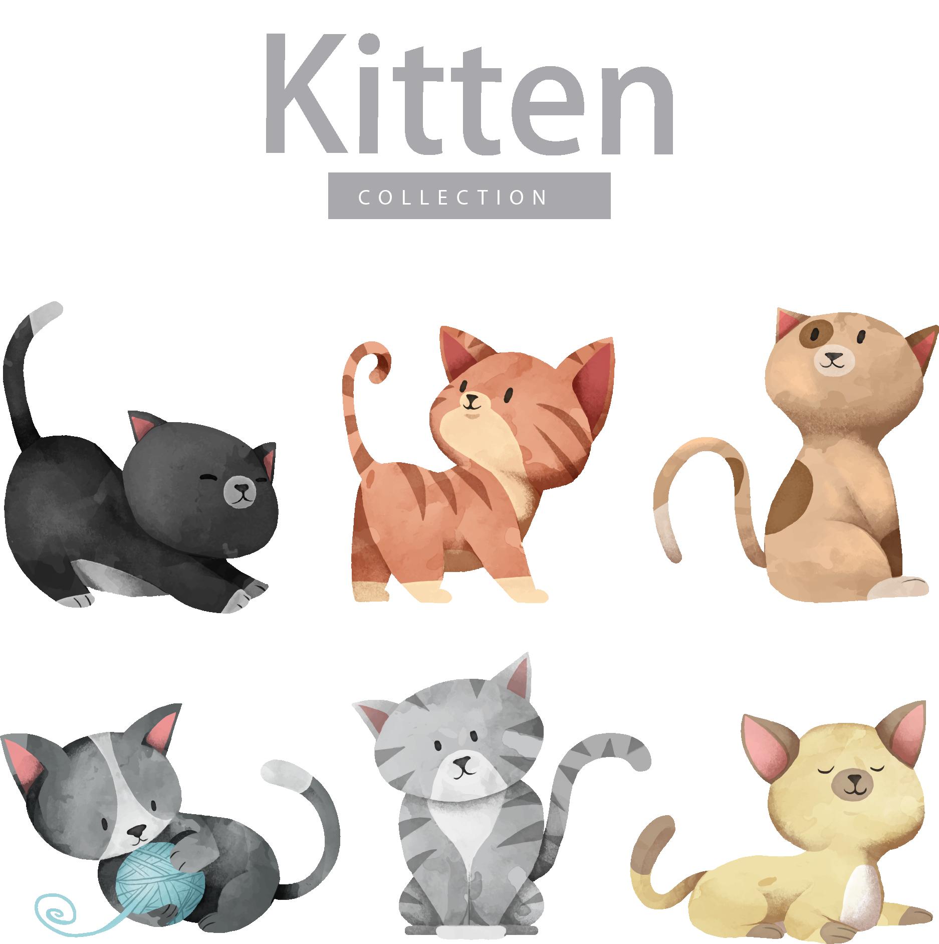 Dog illustration cartoon cute. Kitten clipart rat cat