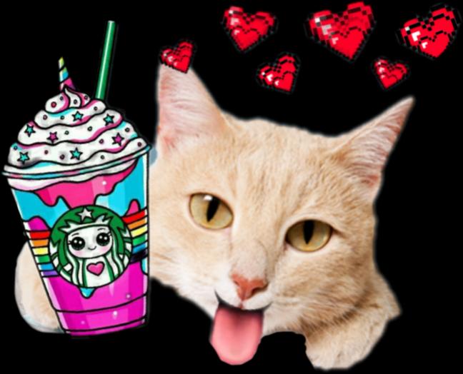 Kitten clipart striped cat. Cute food starbucks cats