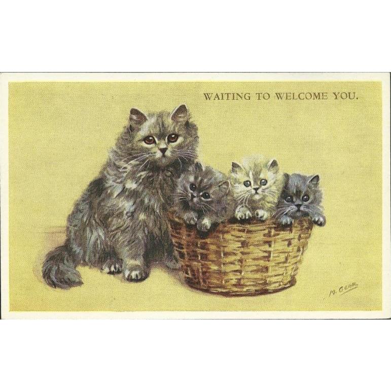 Mabel gear vintage valentine. Kitten clipart three cat