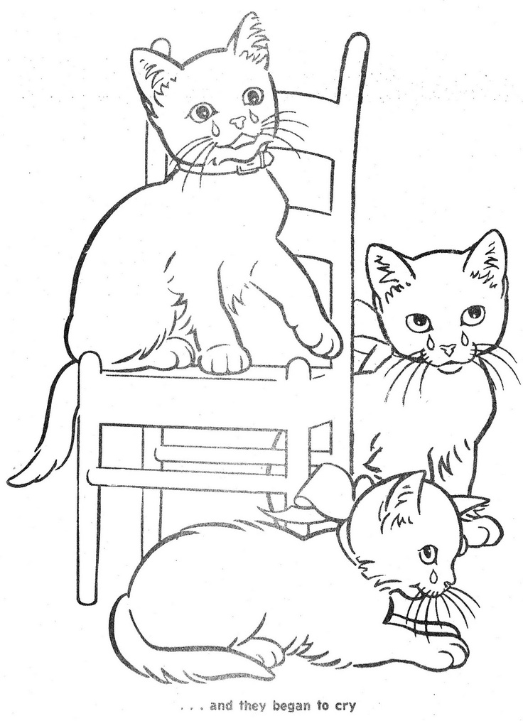 Kitten clipart three cat. Free little cliparts download