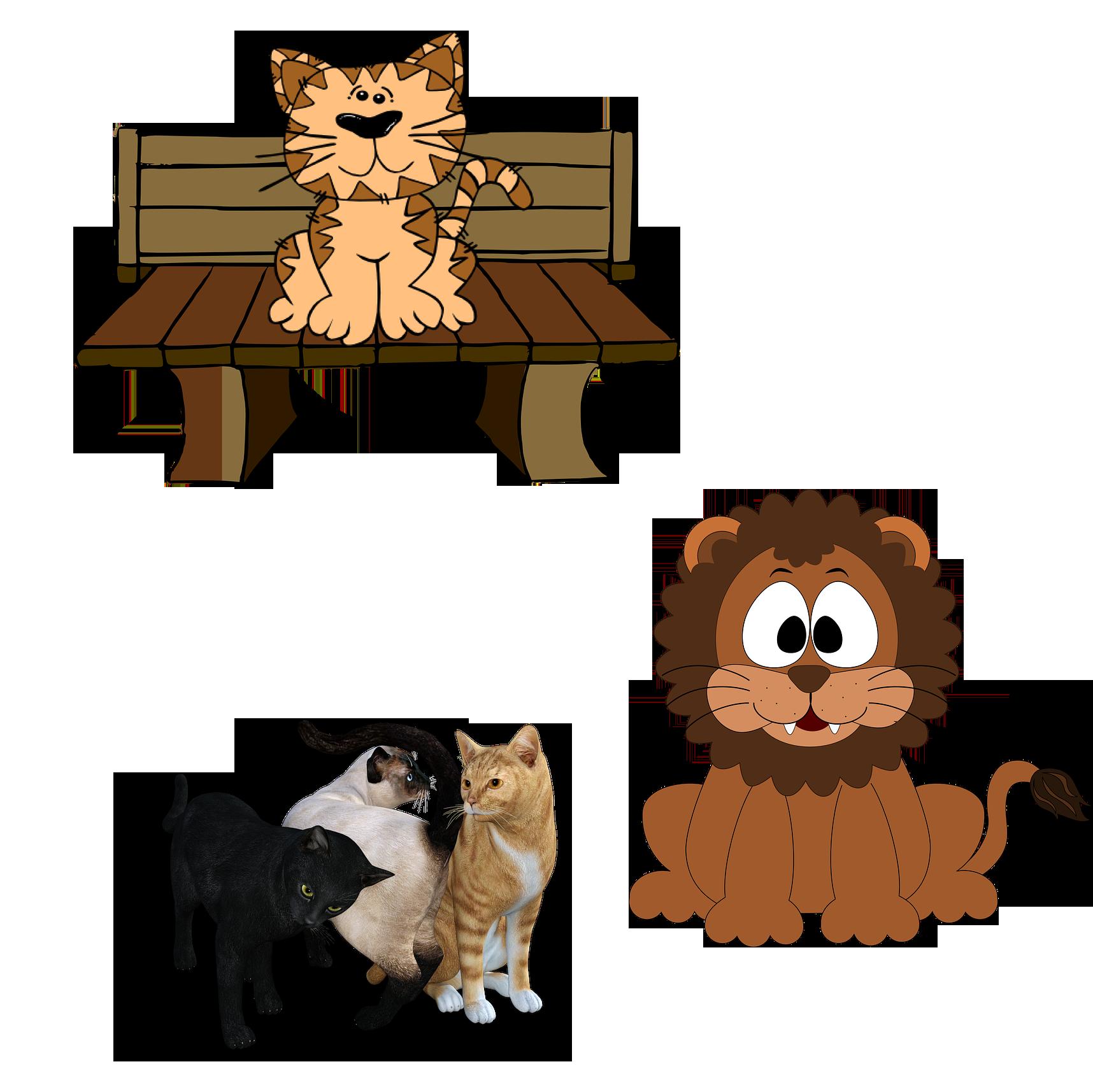 Kitten clipart three cat. Persian pet sitting clip