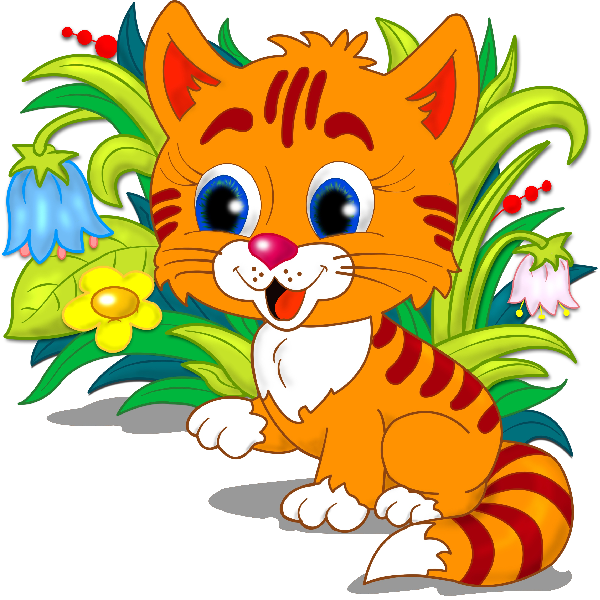 kitten clipart transparent background