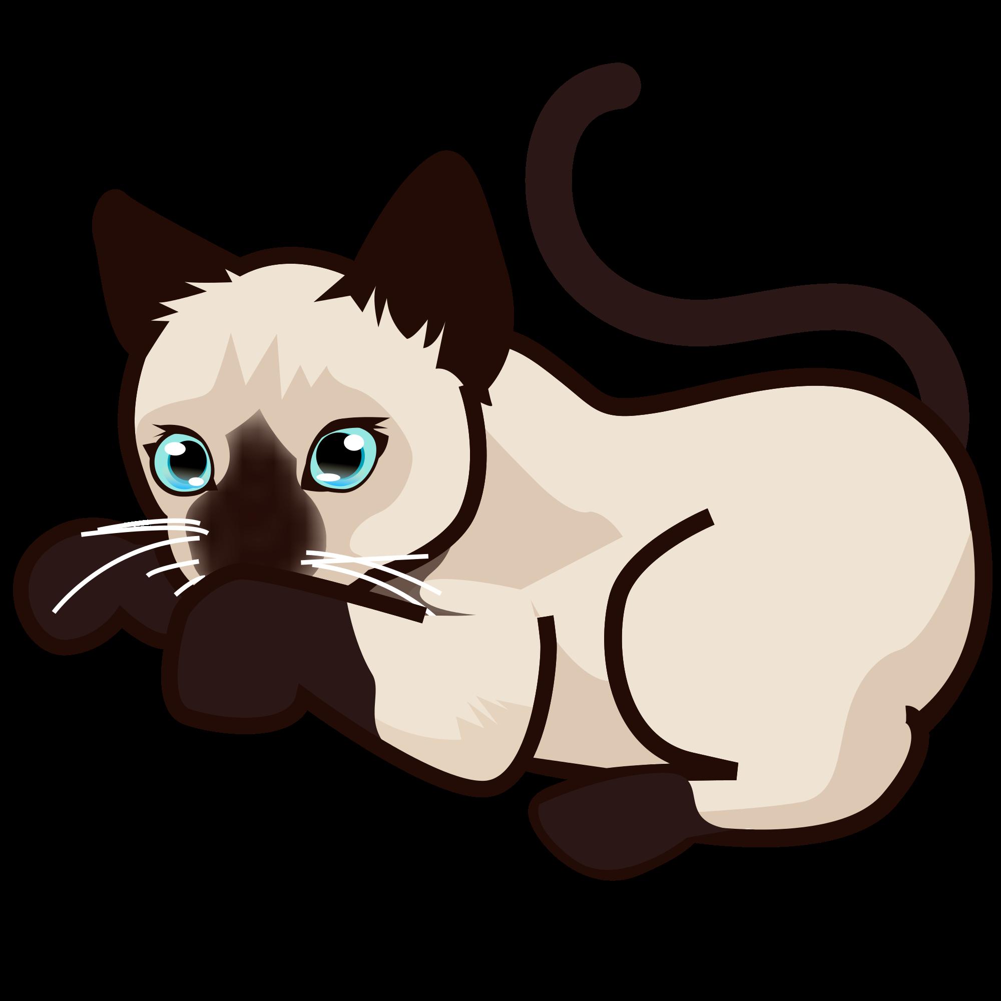 File peo siamese svg. Kitten clipart vector