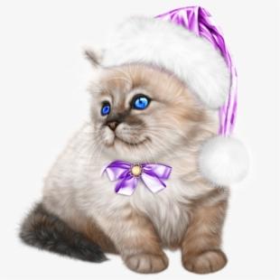 Kittens clipart winter. Tube noel chat purple