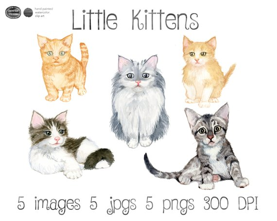 Watercolor clip art cat. Kittens clipart 5 kitten