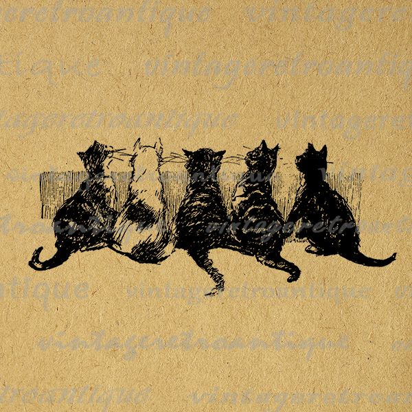 In cat digital graphic. Kittens clipart row