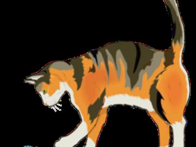 Free feline download clip. Kitty clipart barn cat