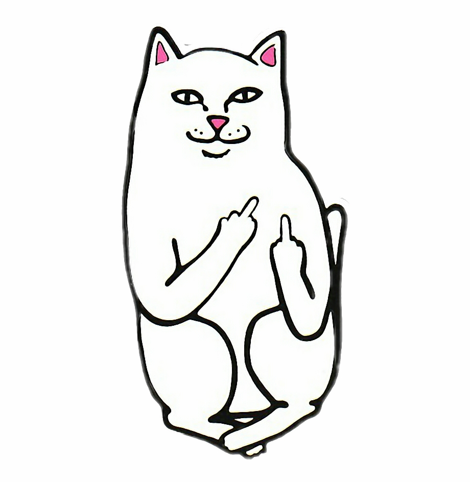 Kitty clipart middle. Rip n dip cat
