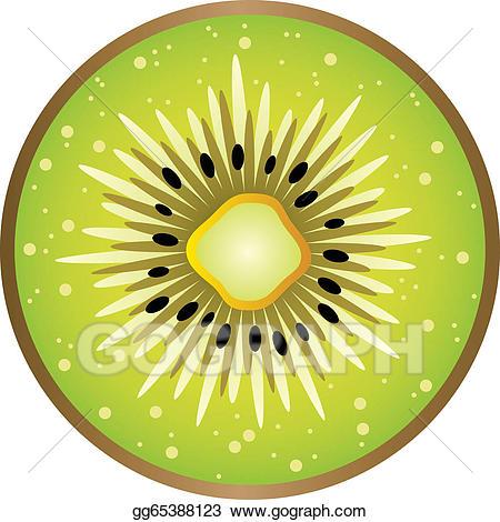 Eps vector stock illustration. Kiwi clipart circle