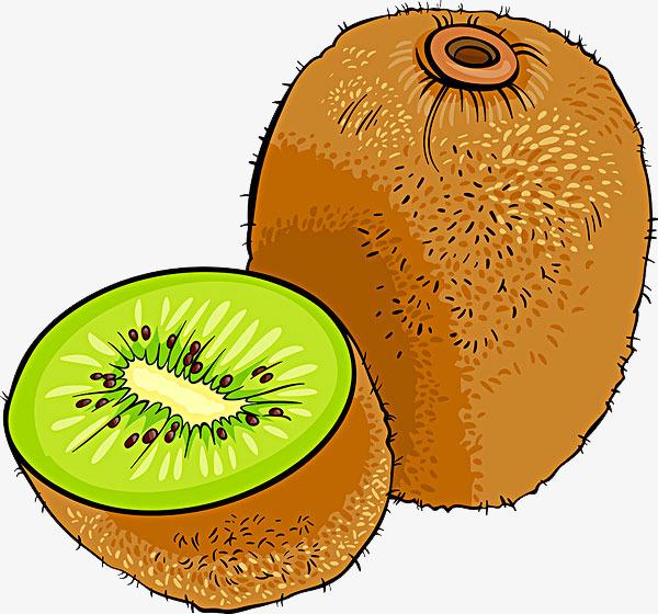 Kiwi clipart clip art. Look at hq images