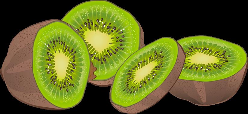 Kiwi clipart green fruit. Forgetmenot fruits kiwis