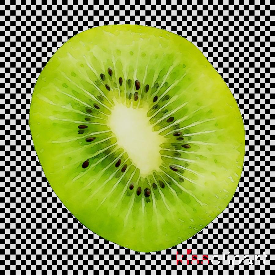 Kiwi clipart green fruit. Bird plant transparent