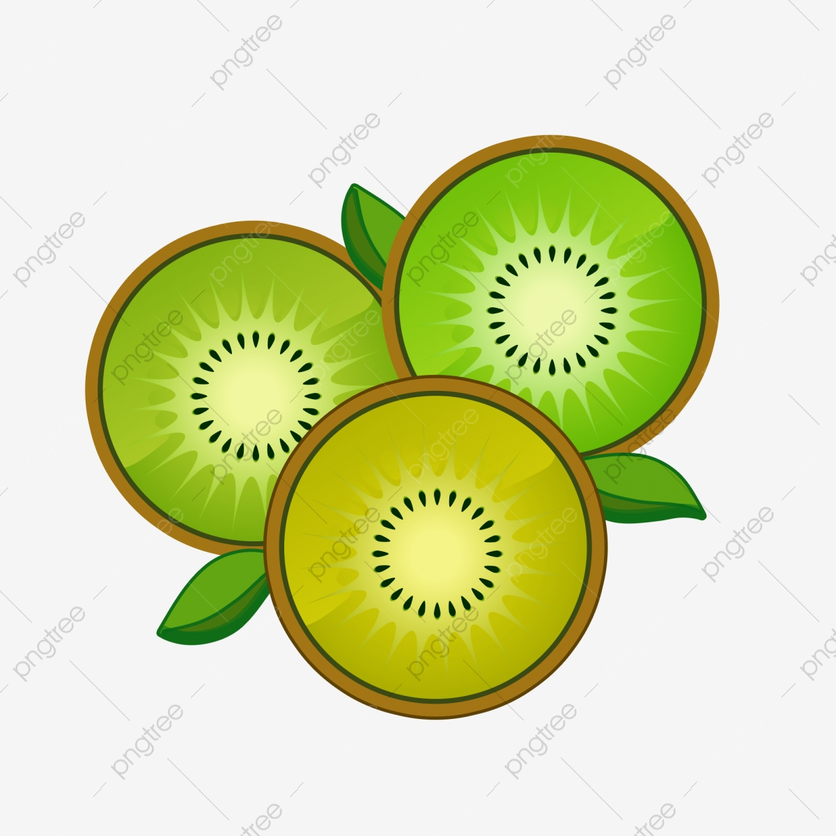 Sliced png transparent . Kiwi clipart green fruit