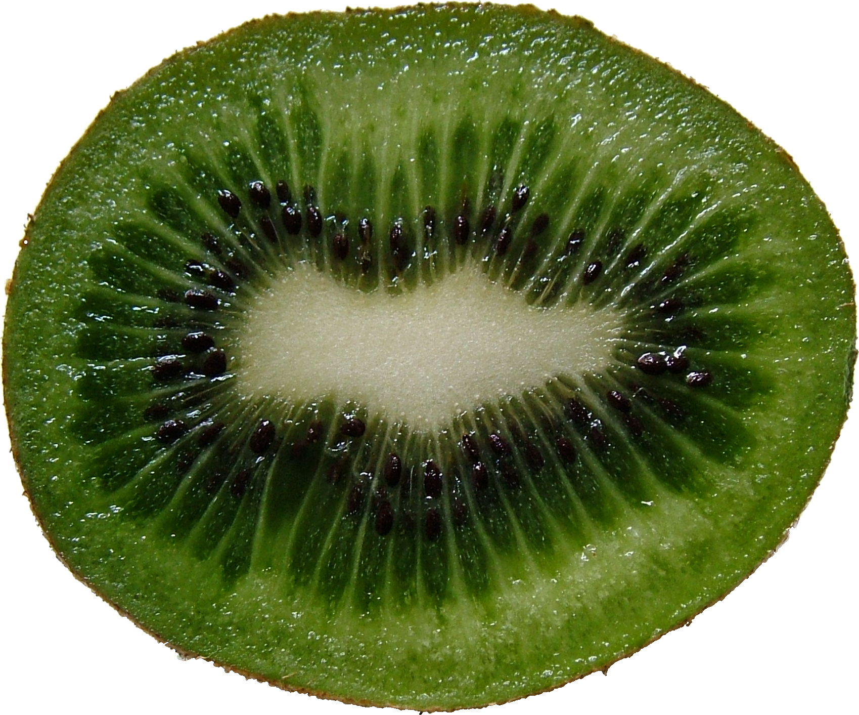 Png images free pictures. Kiwi clipart kind fruit
