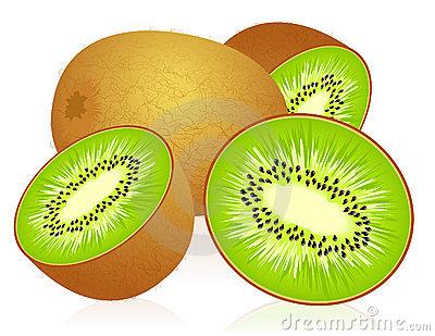 Kiwi clipart kiwi fruit.  clipartlook