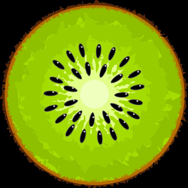 Medium image png . Kiwi clipart kiwi fruit