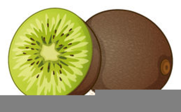 Kiwi clipart kiwi fruit. Free images at clker