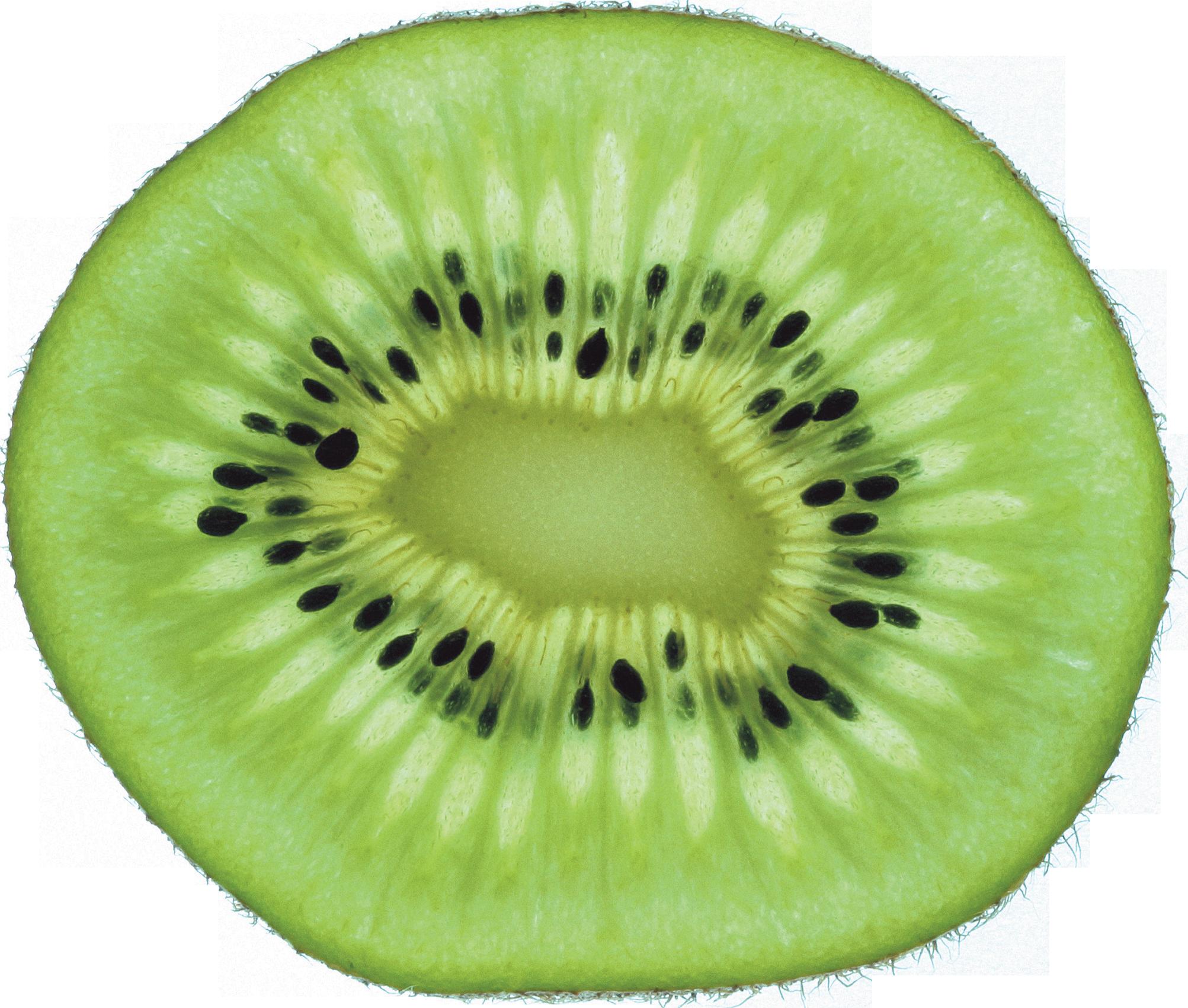 collection of high. Kiwi clipart kiwi slice