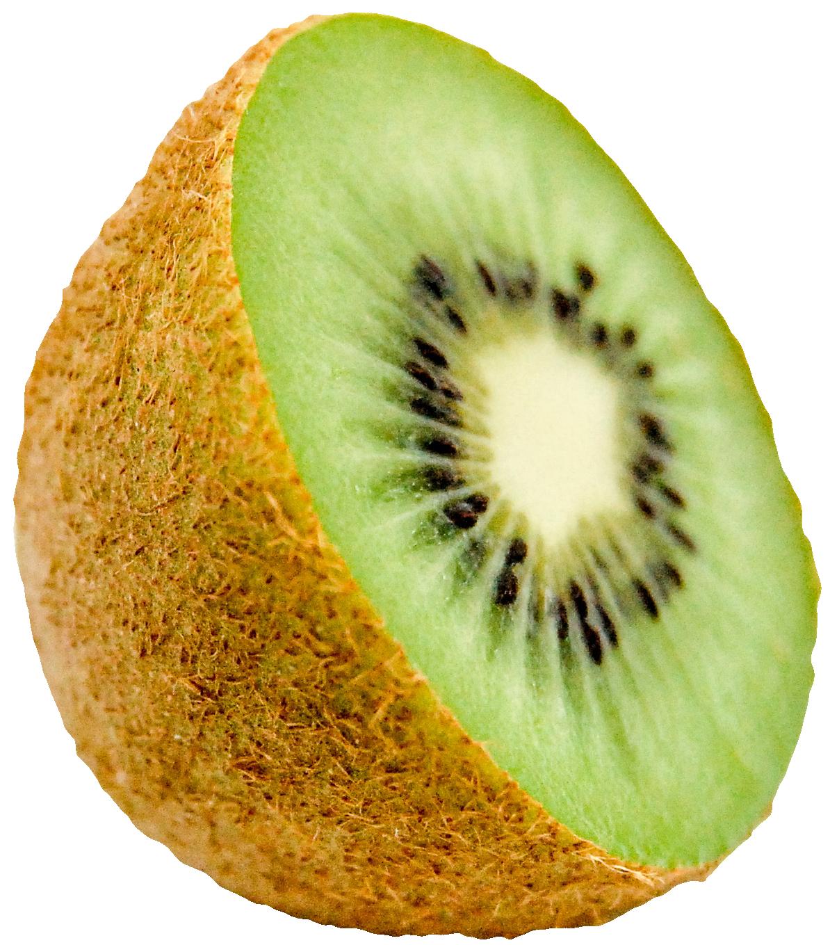 Kiwi clipart large. Png image purepng free