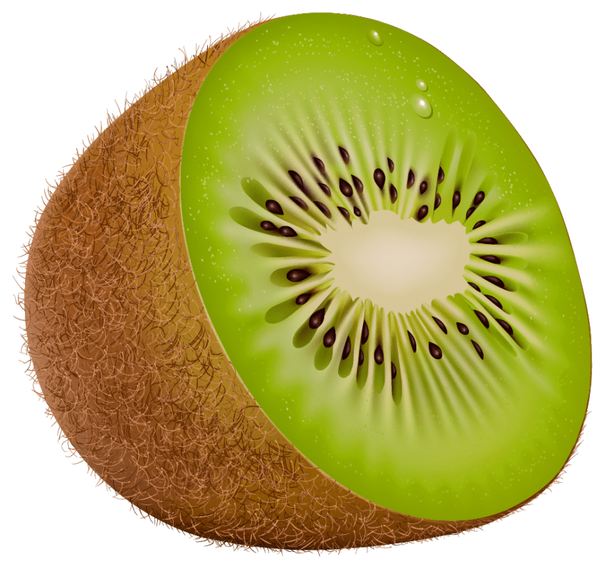 Png free images toppng. Kiwi clipart one