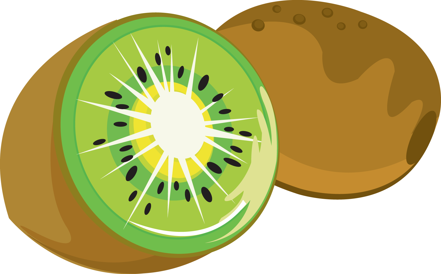 Kiwi clipart sliced.  collection of free