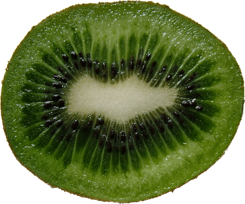 Kiwi clipart sliced. Png free images toppng