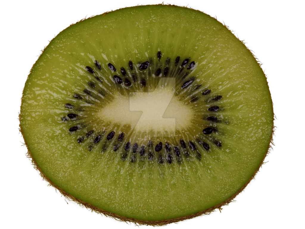 Kiwi clipart sliced. Slice png by bunny