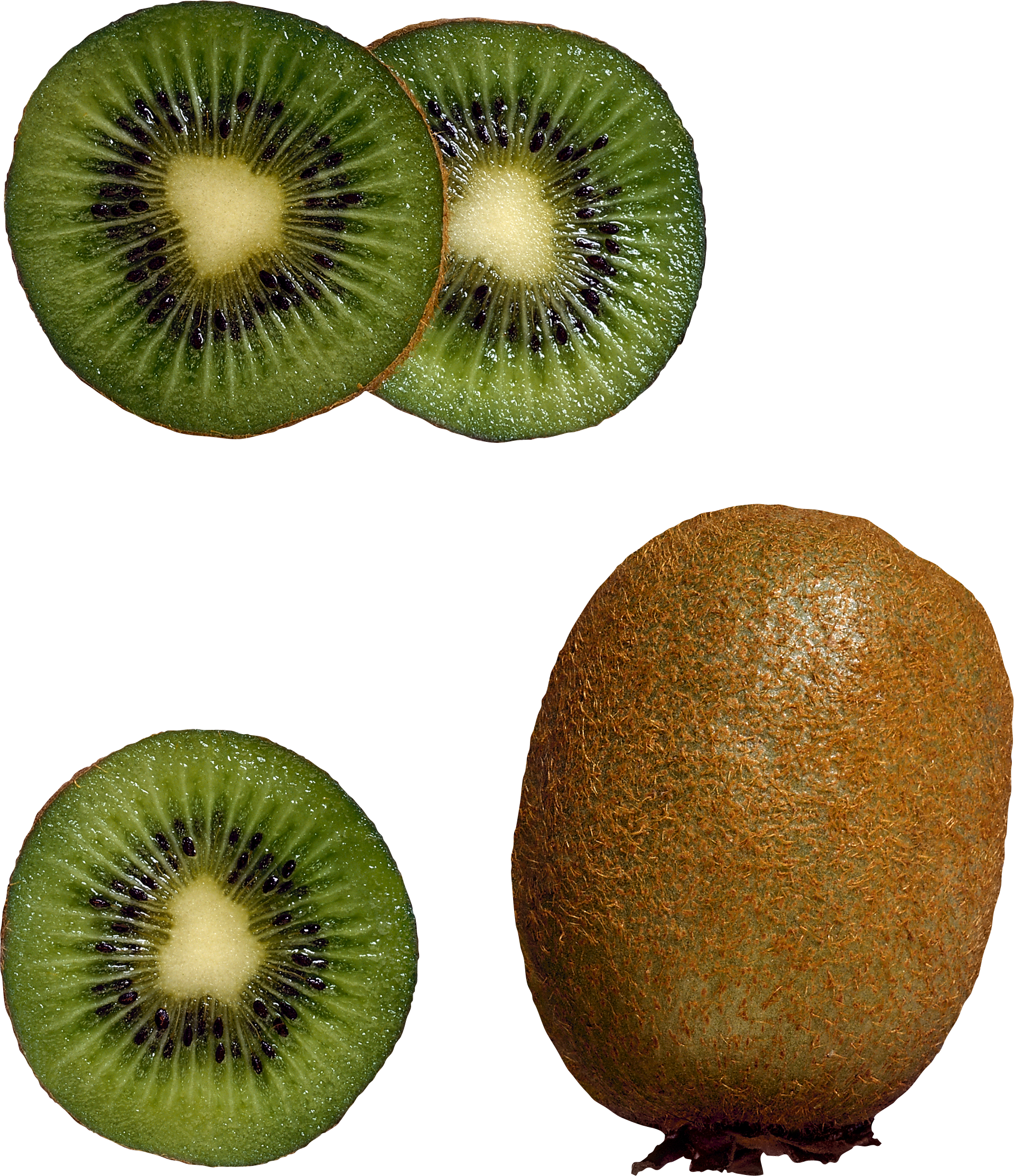 Kiwi clipart transparent background. Png image purepng free