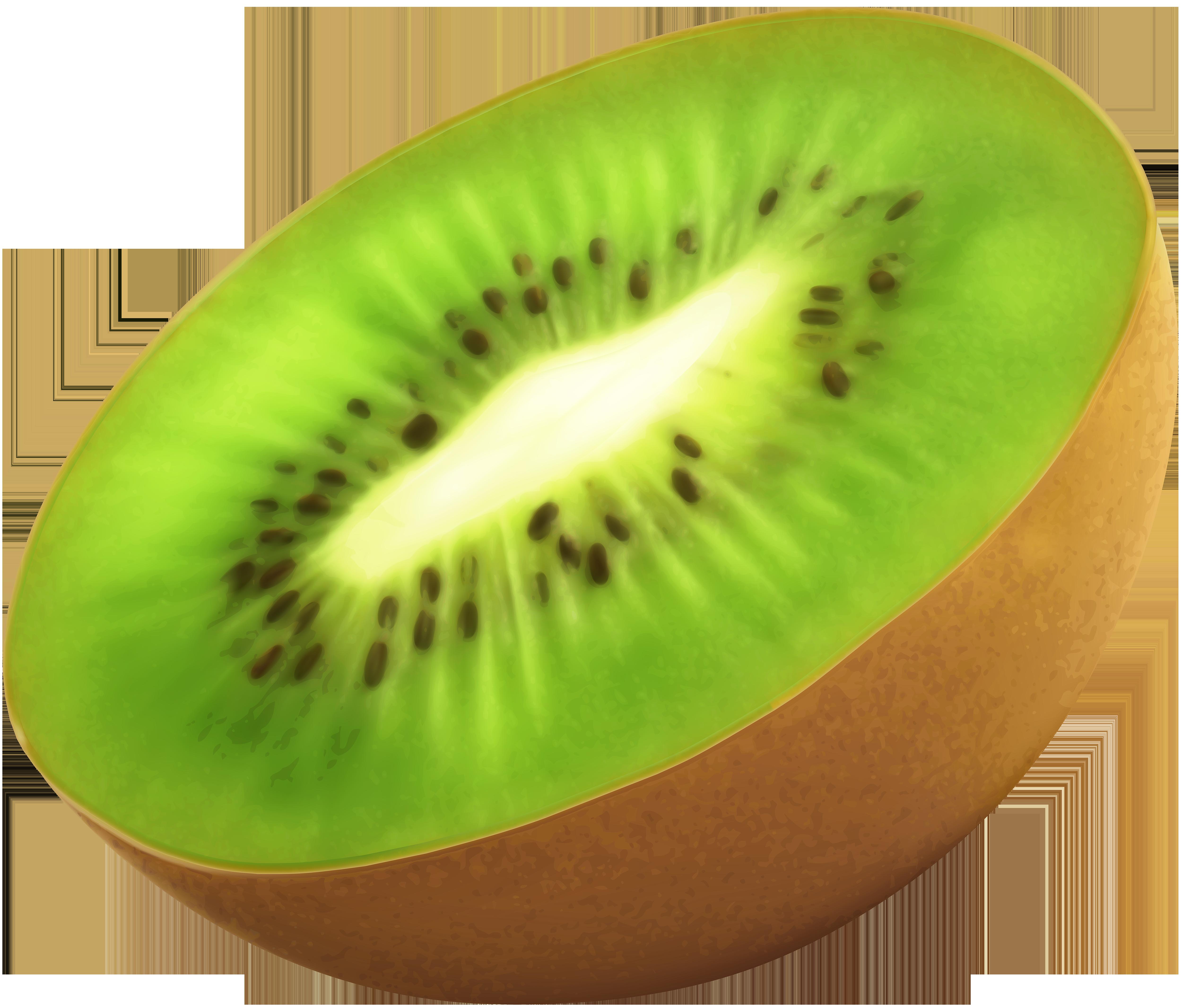 Png clip art image. Kiwi clipart transparent background