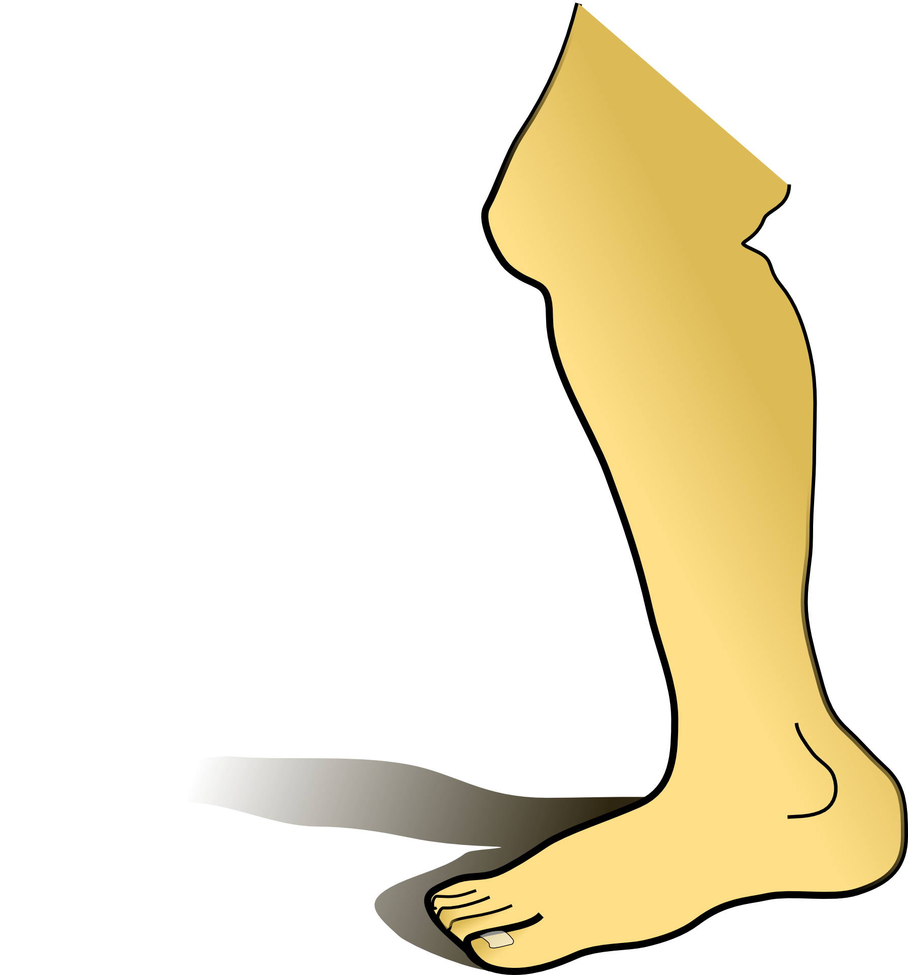 Knee clipart bend knee. Do you know what