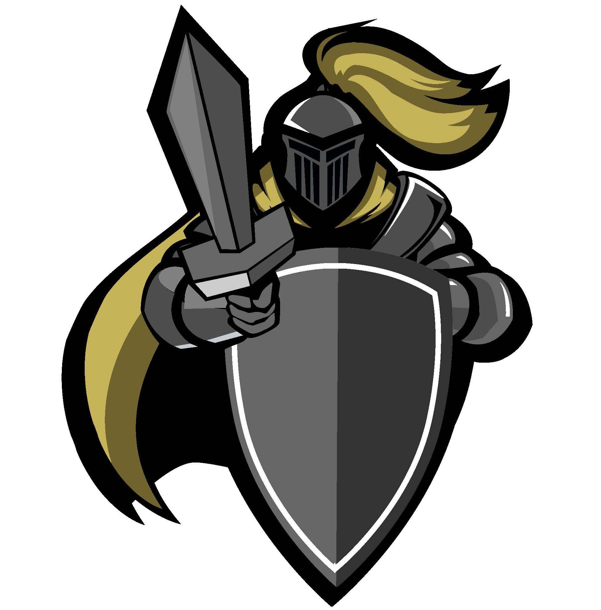 District welcomes new teachers. Knight clipart silver knight