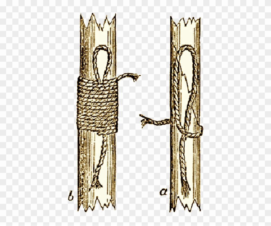 Knot clipart bind. Illustration of the binding