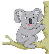 Free clip art pictures. Koala clipart