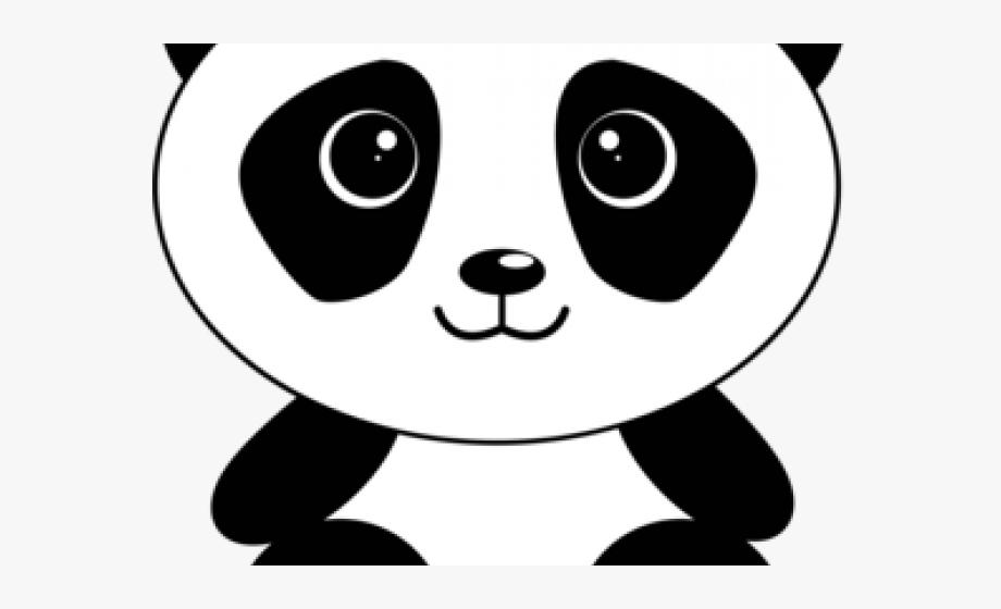 Drawn bear cute cliparts. Koala clipart cartoon panda